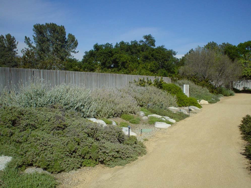 Rancho Santa Ana DG Path